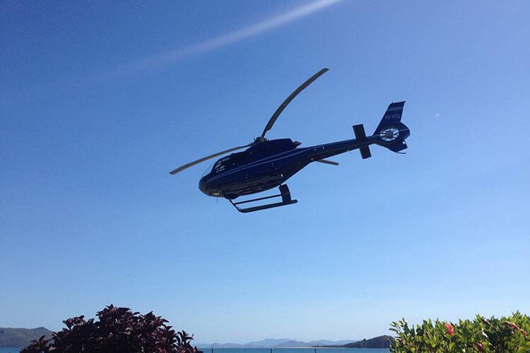 Reefworld Fly - Cruise - 2